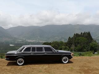 CARTAGO-COSTA-RICA.-LIMOUSINE-SERVICE-MERCEDES-W123-300D1ce04bca86080938.jpg