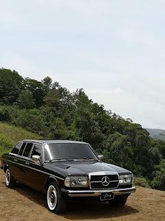 CARTAGO-MOUNTAIN-FOREST.-COSTA-RICA-300D-W123-LIMOUSINEf3fe55e58569f9b3.jpg