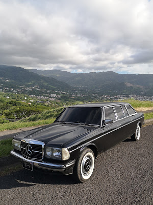 ESCAZU-MANSION-MOUNTAINS.-MERCEDES-W123-LIMOa35e69c6600d2dd9.jpg